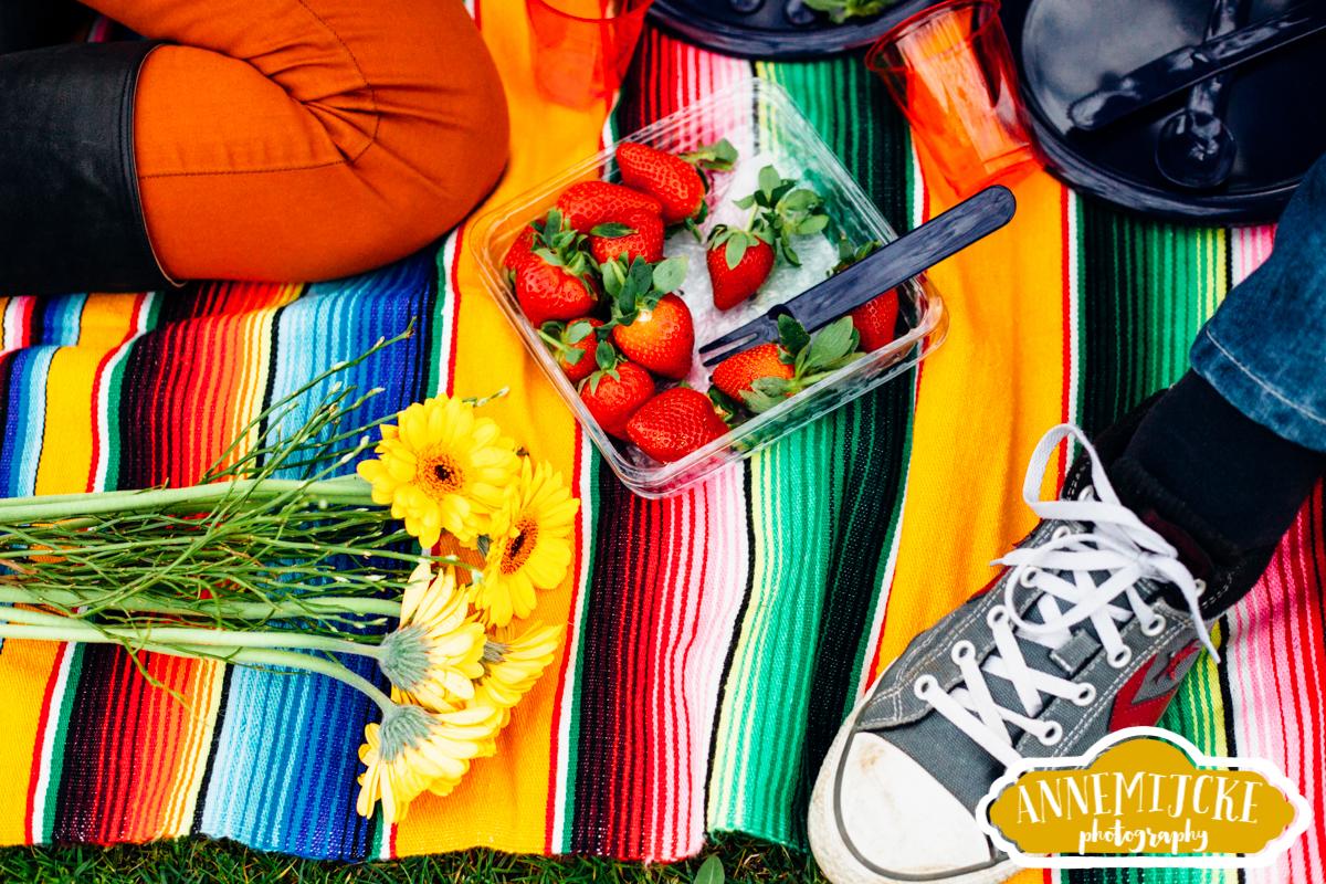 Fotoshoot picknick Nijmegen